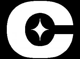 Chase Energy Services Symbol White